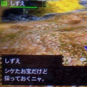 shizu6.jpg